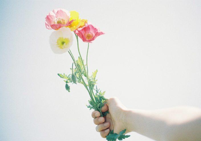 南知多の花ひろば01