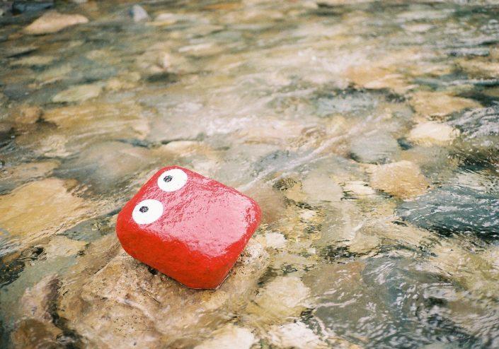 FUJI ROCK FESTIVAL '17の川
