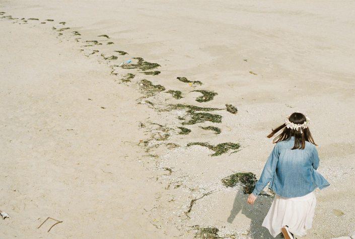 砂浜と海藻