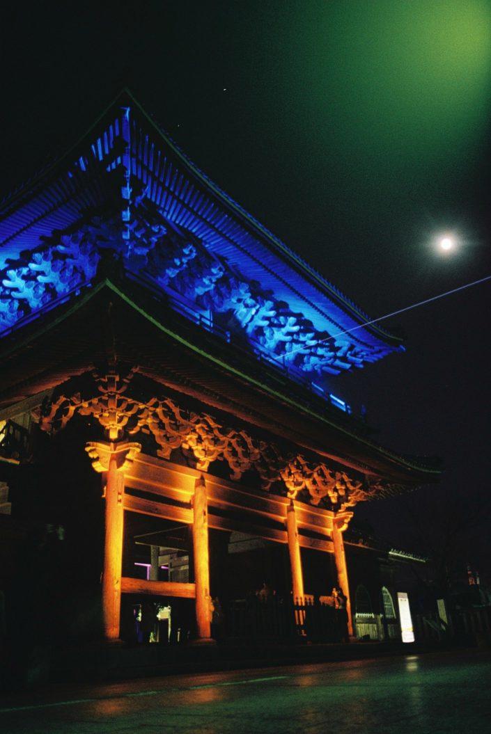 大樹寺の光ビスタライン01