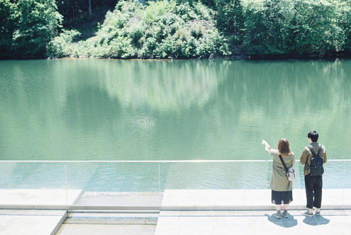 岡崎市美術博物館の池