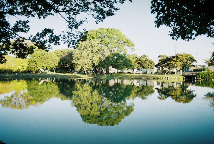 大門水郷公園